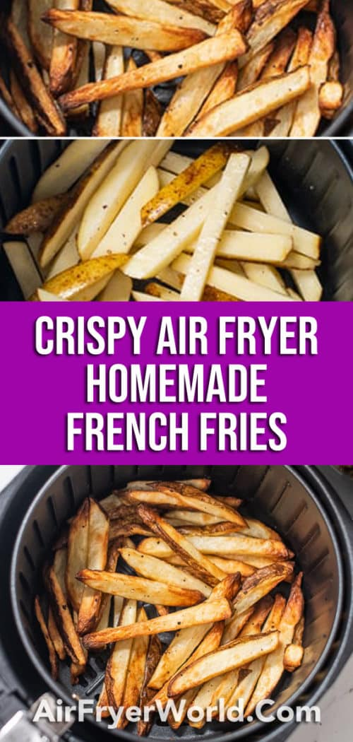 Homemade Air Fried French Fries Recipe in Air Fryer | Air Fryer World
