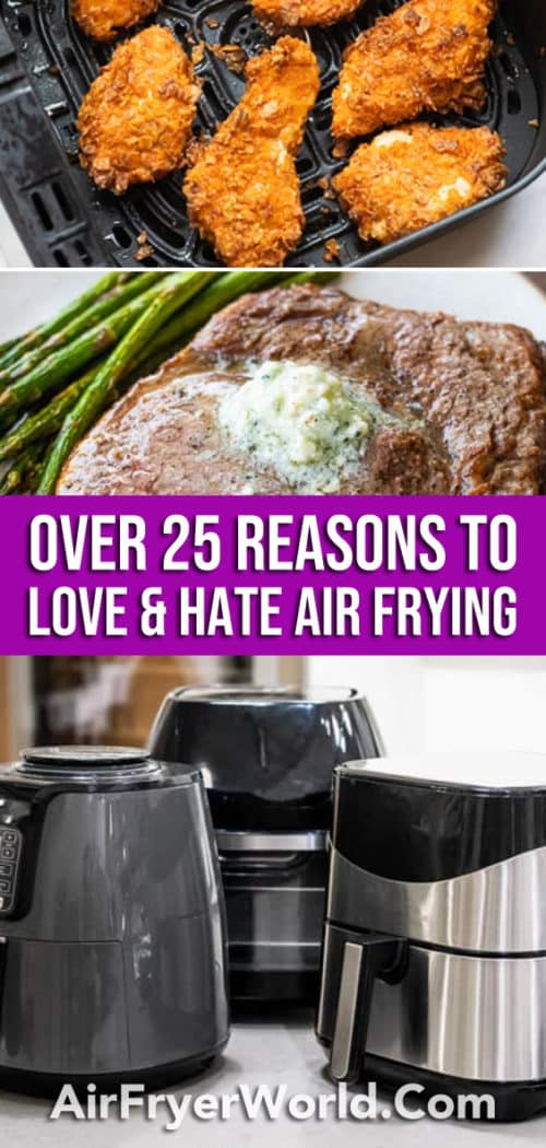 25 Reasons to Love-Hate Air Frying with your Air Fryer   AirFryerWorld.com